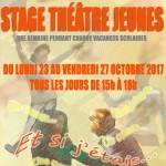 STAGE THEATRE JEUNES - A TOI THEATRE - AUTOMNE 2017